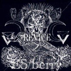 画像1: ES/berry